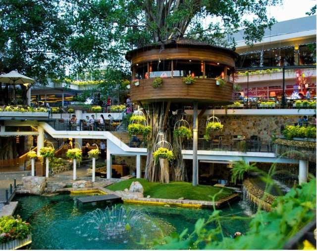 Mẫu thiết kế quán cafe sân vườn